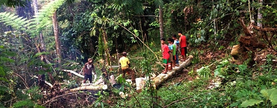 """<a href=""""http://ecojesuit.com/sustainability-science-from-the-mountains-the-bendum-ecology-and-culture-center-in-mindanao-philippines/5073/"""">Sustainability science from the mountains: The Bendum Ecology and Culture Center in Mindanao, Philippines</a>"""